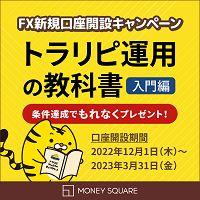 マネースクウェア・ジャパン 比較サイト様向け広告