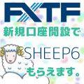 キャンペーン期間中に「GogoJungle」経由で新規口座開設のお申込みをされたお客様に「sheep6」 をプレゼント致します。