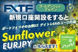 FXTF×「Sunflower EURJPY」 タイアップキャンペーン