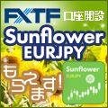 キャンペーン期間中に「GogoJungle」経由で新規口座開設のお申込みをされたお客様に「Sunflower EURJPY」 をプレゼント致します。