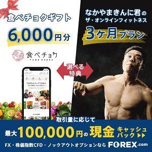 FOREX.com ノックアウトオプション 口座開設_小野です FXトレーダー様専用