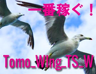 "Tomo_wingシリーズで ""一番稼ぐ"" のは 『Tomo_Wing_TS_W』"