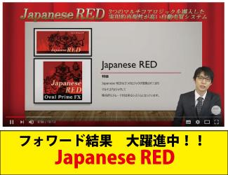 ★動画公開★3つのマルチコアロジックを導入した自動売買システム【Japanese RED】FX・MT4システムトレード