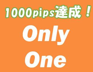 10ヶ月で1000pips達成!「オンリーワン」