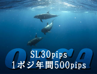 フォワード1年で+500pips!最大SL30pipsの1ポジ堅実EA『ORCA』