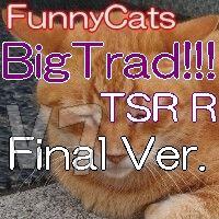 マルチロジックでリスクを軽減【 FC_BigTrad!!!_TSR_R 】