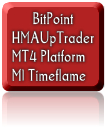 BitPoint_HMAUpTrader