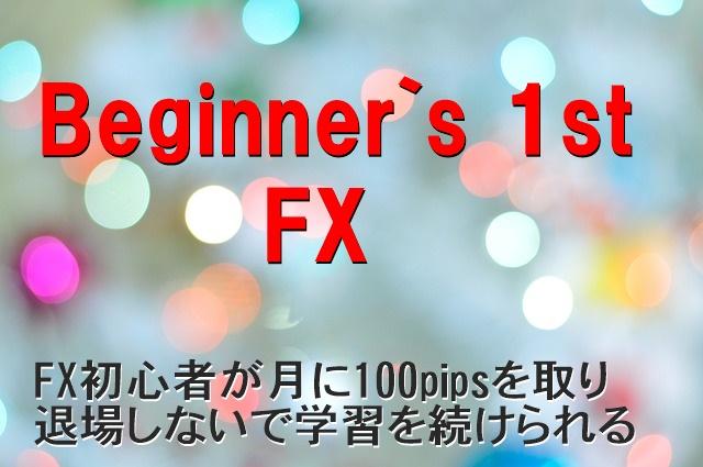 FX初心者が月に100pips取りながら並行して学習出来るロジック。