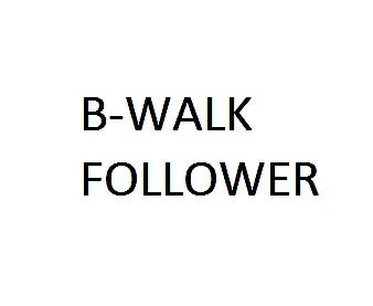 B-WALK follower USD/JPN H1