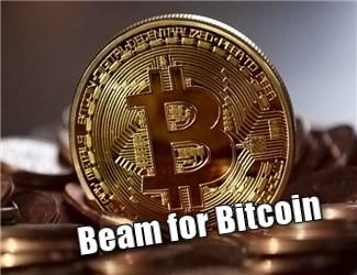 ビットコイン相場でしつこくトレンドを追いかける多通貨対応EA