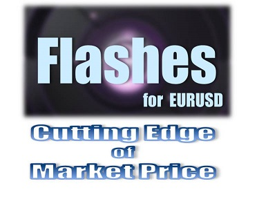 Flashes for EURUSD(自動売買プログラム)
