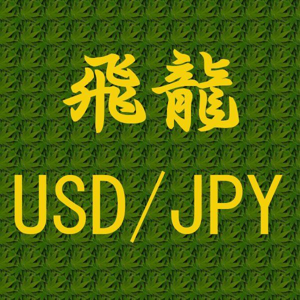 飛龍 USD/JPY