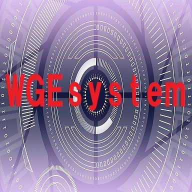 WGEsystem USDJPY