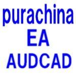 purachina EA AUDCAD専用