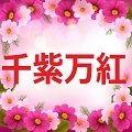 千紫万紅~SENSI-BANKOU~