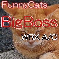 FC_BigBoss_WRX_A/C