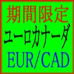 ユーロカナーダ EURCAD は長期的に大きな利益を上げる事に特化したEAになっております。