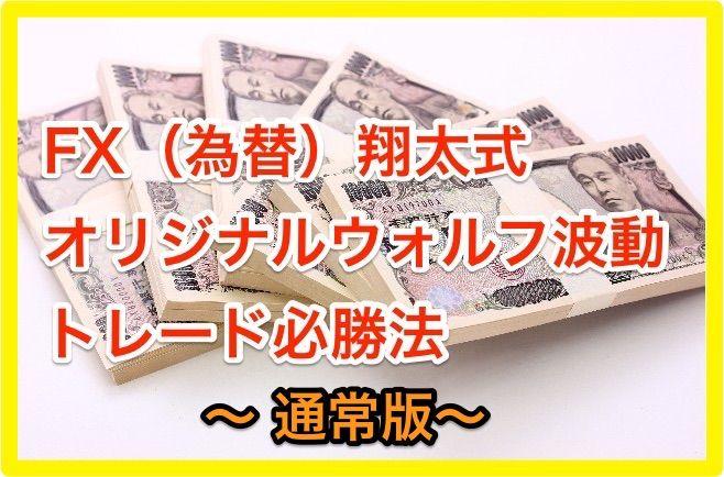 FX(為替)翔太式オリジナルウォルフ波動トレード必勝法 〜通常版〜