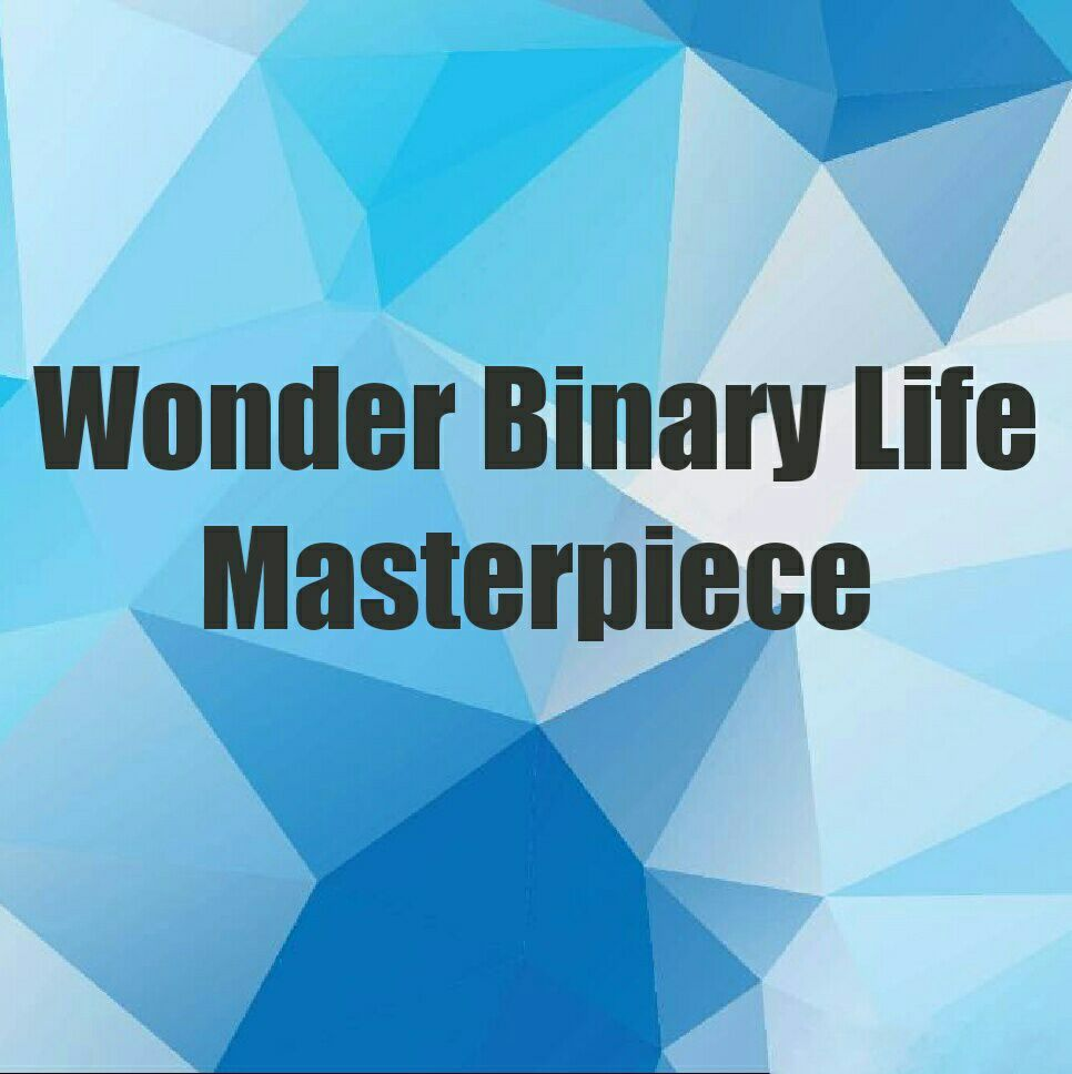 Wonder Binary Life Masterpiece