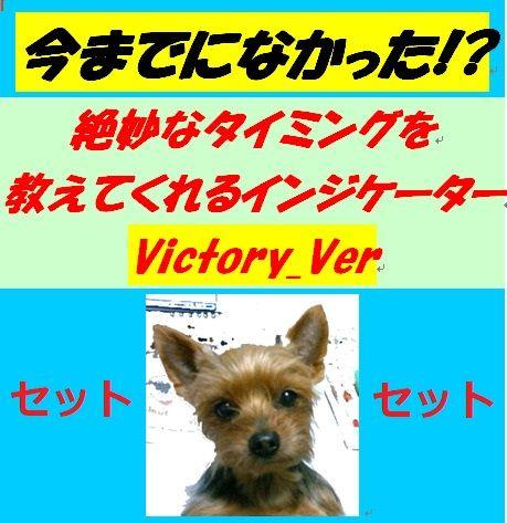 お得なセット【新インジケーターVictory.verも入ったチョーお得な4点セット】