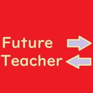 Future Teacher ポンドドル版