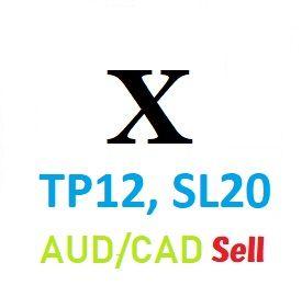Xシリーズ第1弾『TP12,SL20』の損小利小EA