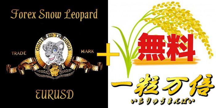 Forex_Snowleopard EURUSD Plus 一粒万倍