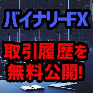 取引履歴を無料公開!バイナリーFXで勝てるようになる口座!