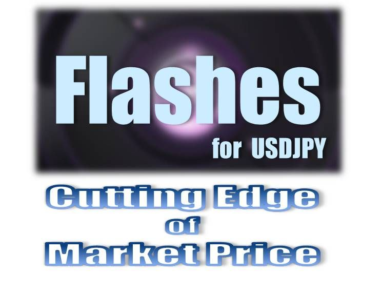 Flashes for USDJPY 再販セット