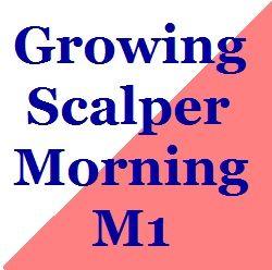 Growing_Scalper_Morning_M1