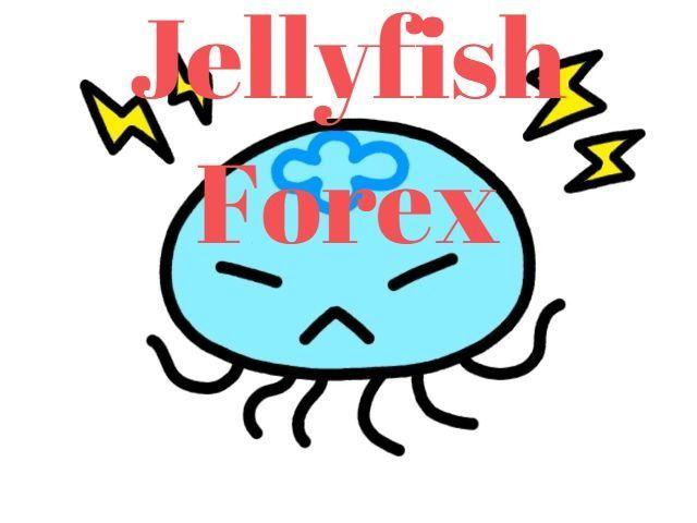 Jellyfish_Forex
