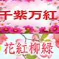 花紅柳緑と千紫万紅の期間限定のお得なセット販売