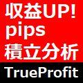 TrueProfit