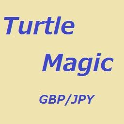 TurtleMagic_GY_15m_scal