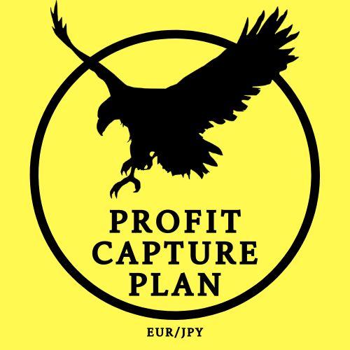 Profit Capture Plan