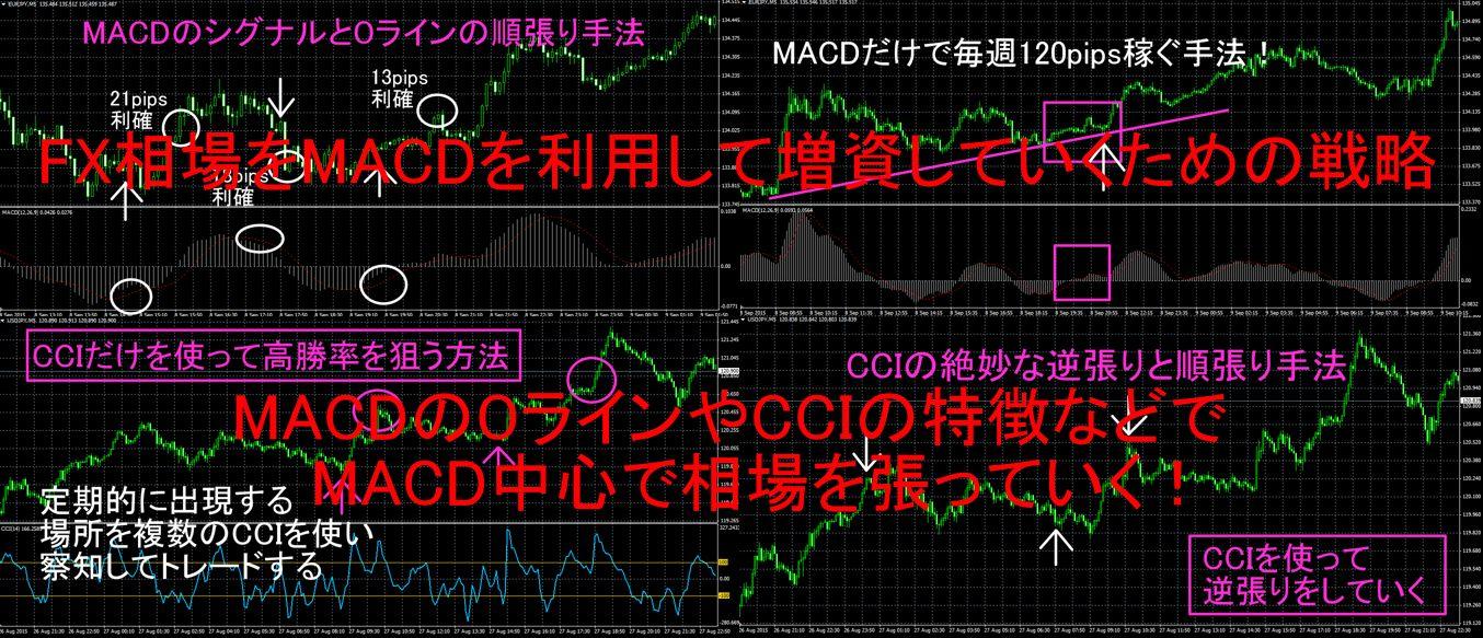 FX相場をMACDを利用して増資していくための戦略