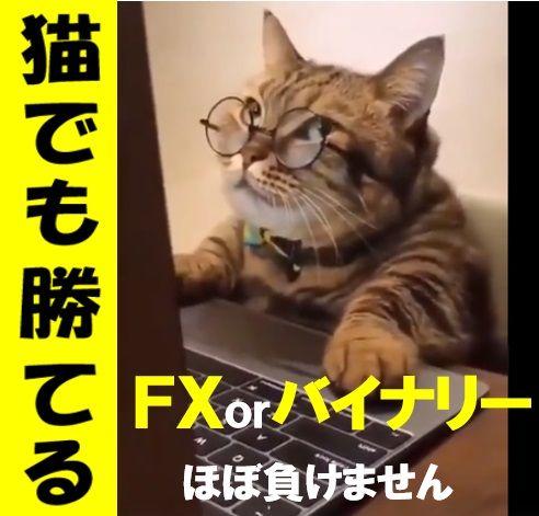 FXとバイナリーオプションの最良エントリーポイントが絞れるようになります!
