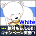900本ご購入御礼!・Forex White Bear V3