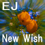 New Wish EJ