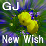 New Wish GJ