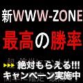 WWW-ZONE・脅威の反転率95%・矢印リペイントなしでございます!!!