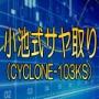 「小池式サヤ取り」(CYCLONE-103KS)