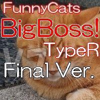 じっくり待ってマルチロジックでガツガツ攻める【 FC_BigBoss!_TypeR 】