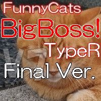 FC_BigBoss!_TypeR