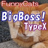 FC_BigBoss!_TypeX