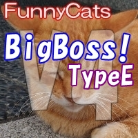 FC_BigBoss!_TypeE