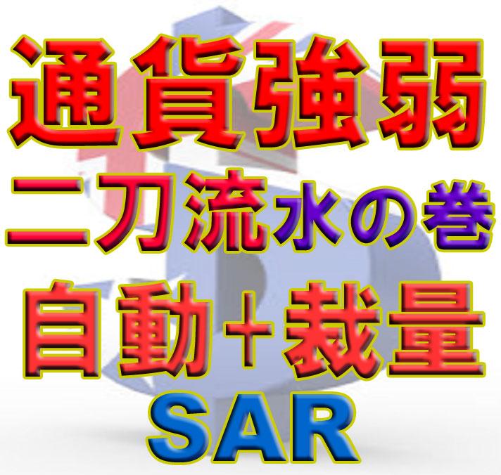 二刀流 TBMES_SAR